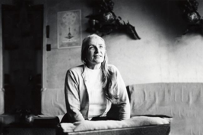 Radha Swami Temple Swami Radha's Legacy