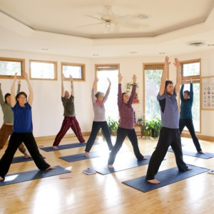 Local Community Classes - Hidden Language Hatha Yoga, Dream Yoga @ Yasodhara Ashram