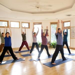 Local Community Classes - Hidden Language Hatha Yoga, Dream Yoga @ Yasodhara Ashram