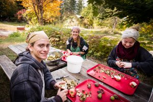 Young Adult Program Intake: Fall Harvest @ Yasodhara Ashram