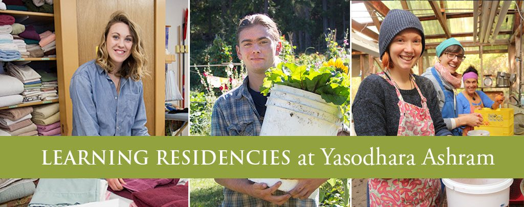 Learning Residencies at Yasodhara Ashram