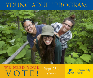 Young How adult vote to