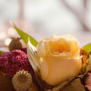 Mother's Day Renewal @ Yasodhara Ashram