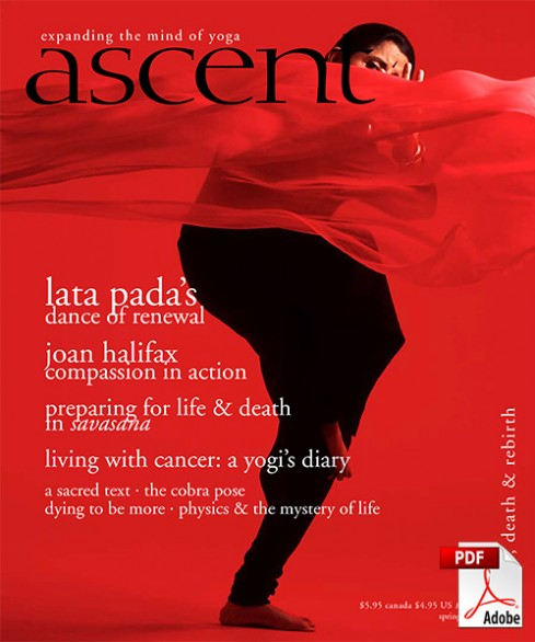 ascent-13-pdf
