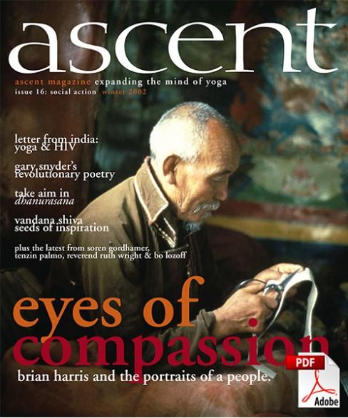 ascent-16-pdf