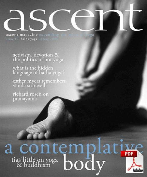 ascent-17-pdf