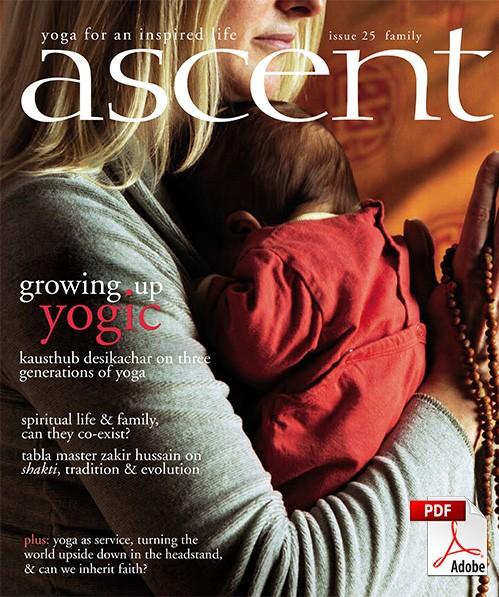 ascent-25-pdf