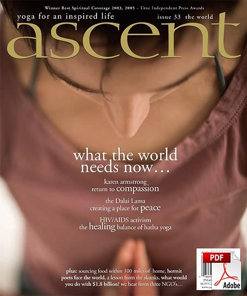 ascent-33-pdf