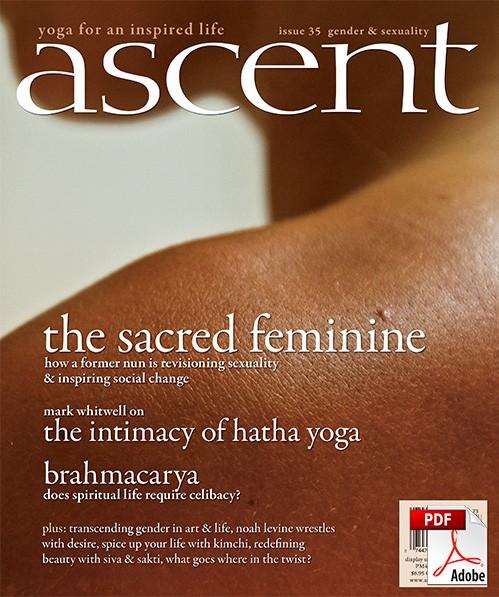 ascent-35-pdf