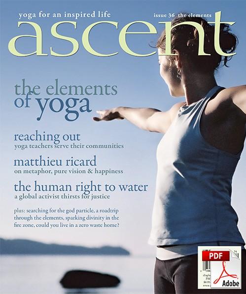 ascent-36-pdf