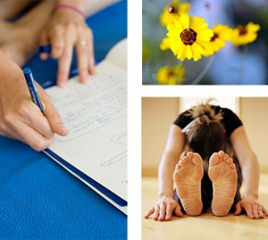 Hidden Language Hatha Yoga Teacher Certification @ Yasodhara Ashram